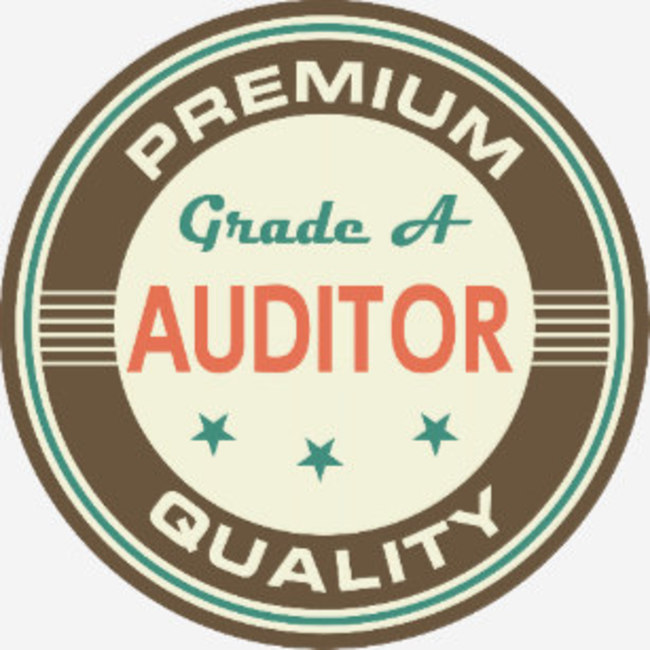 Large premium quality auditor
